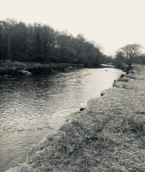 Colonel's Water, River Irfon